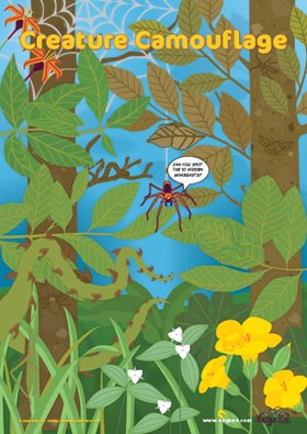 Bugs Ed Creature camouflage poster