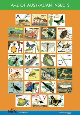 Bugs Ed A-Z of Australian Insects