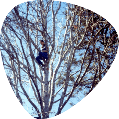 michelle-in-a-tree