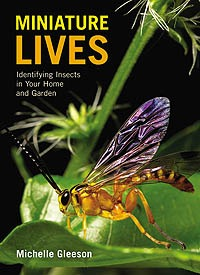 Bugs Ed Miniature Lives